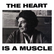 Gang of Youths: The Heart Is a Muscle (Radio Edit)