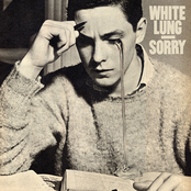 White Lung: Sorry