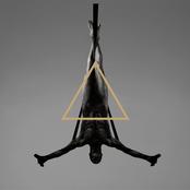 Triangle: II. Metaflesh