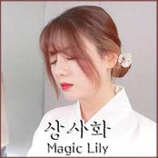 상사화 (Magic Lily)
