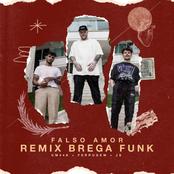 Falso amor (Remix Brega Funk)