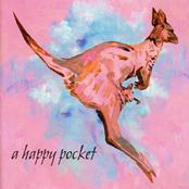 Trashcan Sinatras: A Happy Pocket