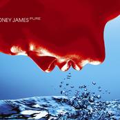 Boney James: Pure