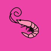 Kero Kero Bonito: Flamingo
