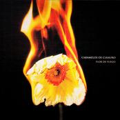 Caramelos De Cianuro: Flor de Fuego