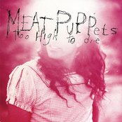 Meat Puppets - Too High To Die Artwork