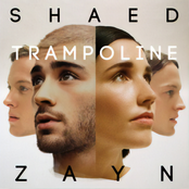 Shaed: Trampoline (with ZAYN)