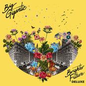 Big Gigantic: Brighter Future (Deluxe Version)