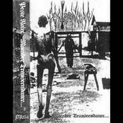 Macabre Transcendance