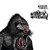 Charlie Hunter: Baboon Strength
