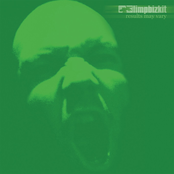 Behind Blue Eyes by Limp Bizkit