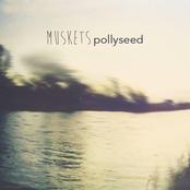 Pollyseed