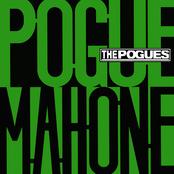 Pogue Mahone