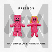 Marshmello: FRIENDS