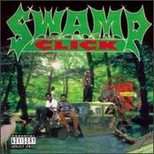 swamp click