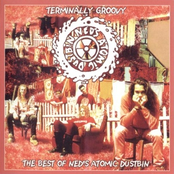 Terminally Groovy: The Best Of Ned's Atomic Dustbin