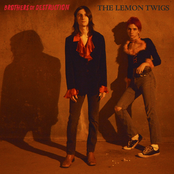 The Lemon Twigs: brothers of destruction