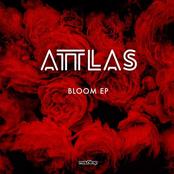 Attlas: Bloom EP