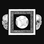 Ash Borer/Fell Voices Split LP