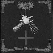 Black Harmony/The Dead Beginners