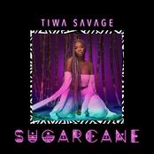 Sugarcane - EP