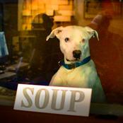 Soup - EP