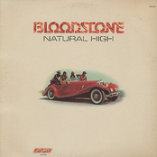 Bloodstone: Natural High