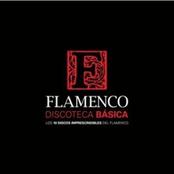 Miguel Poveda: Discoteca Básica Del Flamenco