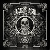 Calcium: Skull Vault EP