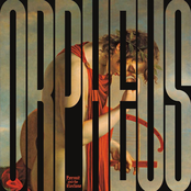 Orpheus vs. the Sirens