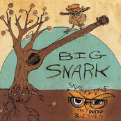 snarky dave & the prickly bluesmen