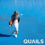 Quails - High Hopes