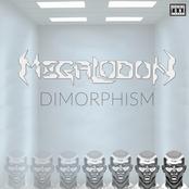 Megalodon: Dimorphism