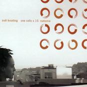 Zoe Keating: One Cello × 16: Natoma