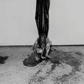 Hide - Interior Terror Artwork