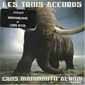 Les Trois Accords: Gros Mammouth Album
