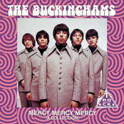 The Buckinghams: Mercy, Mercy, Mercy