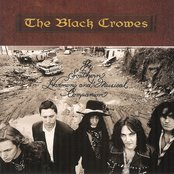 The Black Crowes - No Speak No Slave