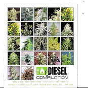 Diesel Compilation: Sickbay Records