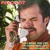 Did I Make You Cry On Christmas Day?