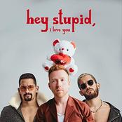 Hey Stupid, I Love You (feat. Mau y Ricky) [Spanglish Version]