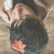 Crucial Star: Fall 2
