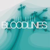 Head North: Bloodlines