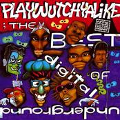 Digital Underground: Playwutchyalike: The Best Of Digital Underground