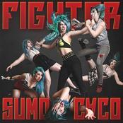 Fighter (Radio Edit)
