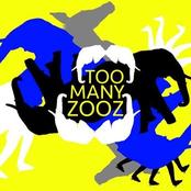 Too Many Zooz: F NOTE