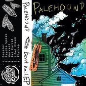 Palehound: Bent Nail