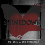 The Crow & The Butterfly