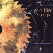 Old Blind Dogs: Close To The Bone