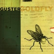 Guster: Goldfly